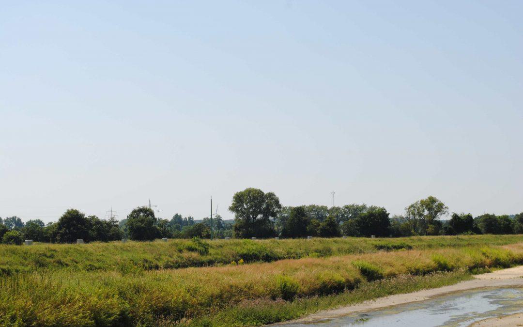 Stadtentwicklung- und Umweltausschuss diskutiert Klimanotstand